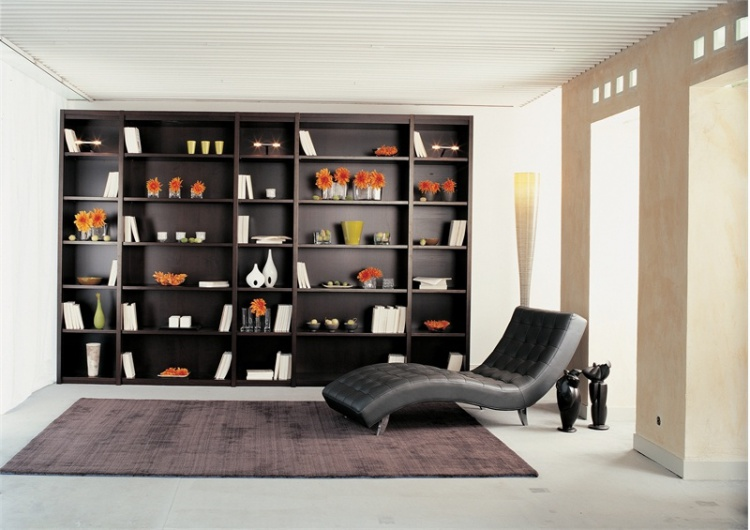 The rack frame is made of solid wood and glass Bibliophile, Roche Bobois